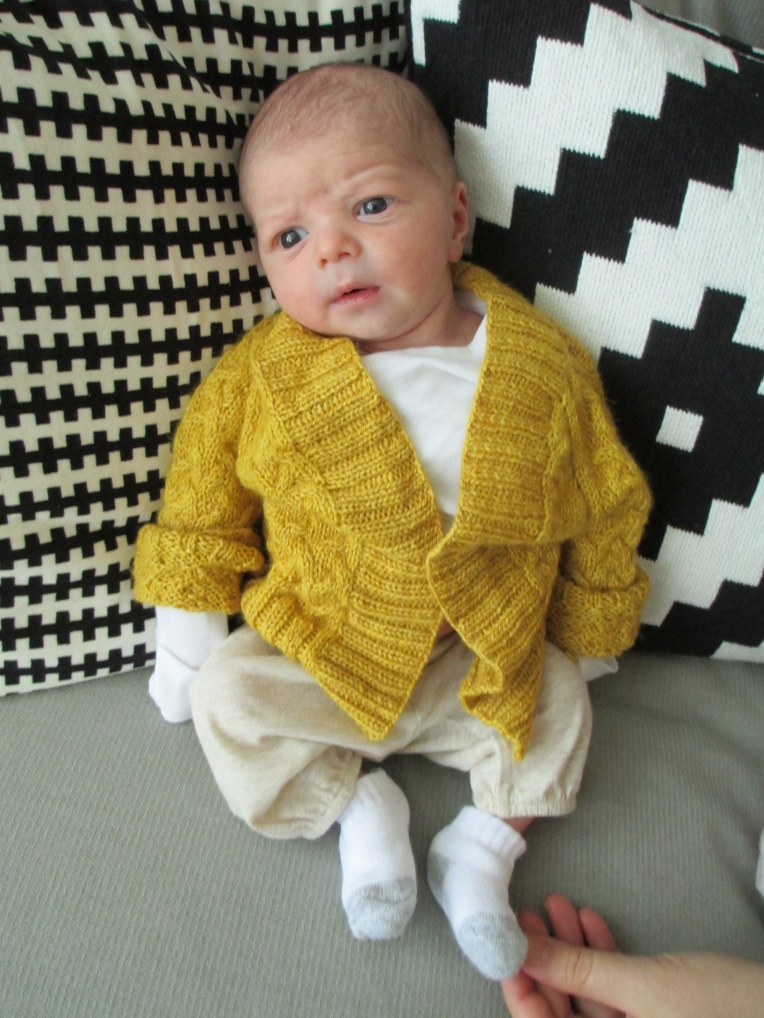 Marissa-Huber-Teeny-Baby-Knitting-Rocky-Mountain-Sweater